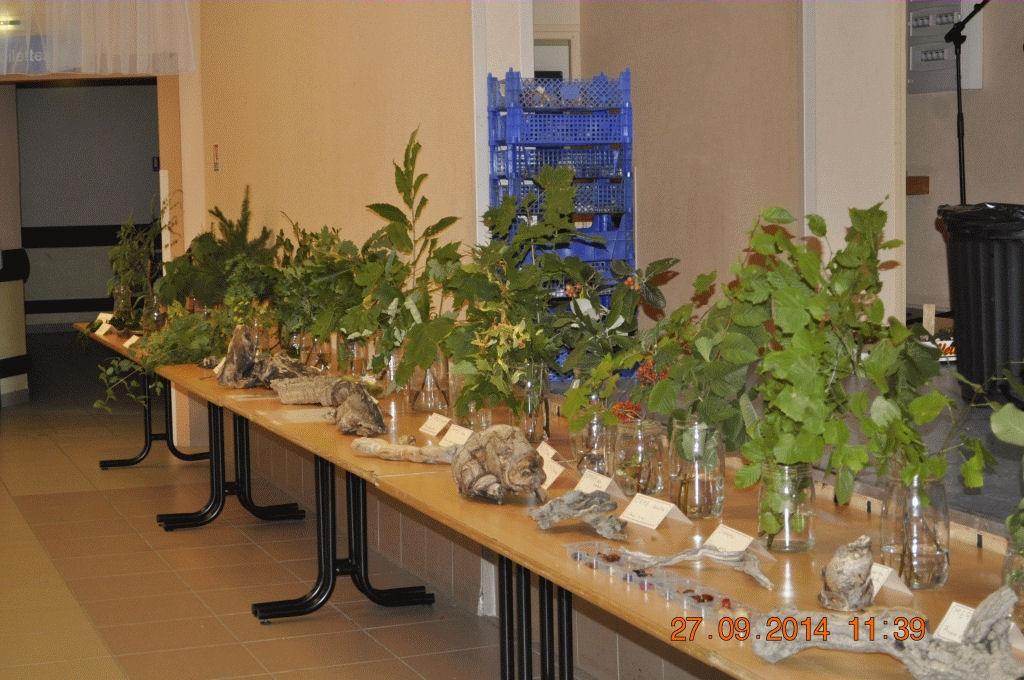 Expo botanique très pédagogique
